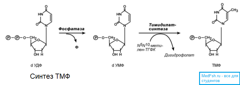 Синтез ТМФ