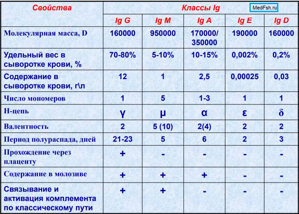 Свойства классов иммуноглобулинов